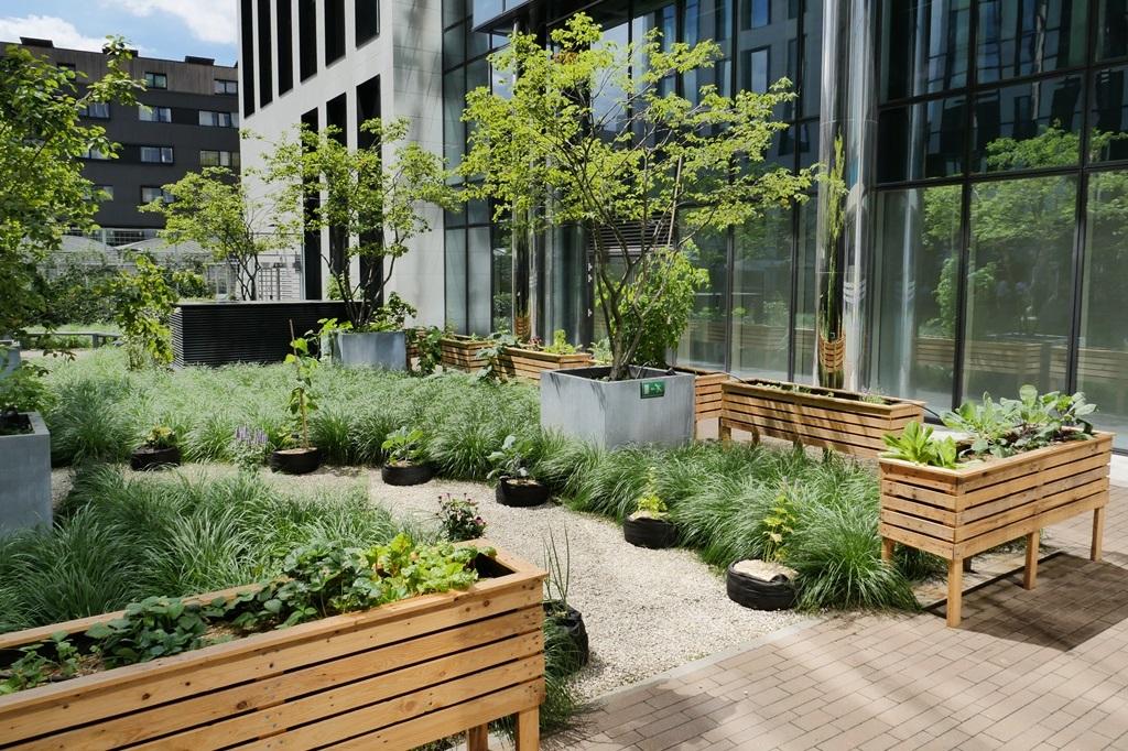 Skyfarms : formation en agriculture urbaine pour les entreprises