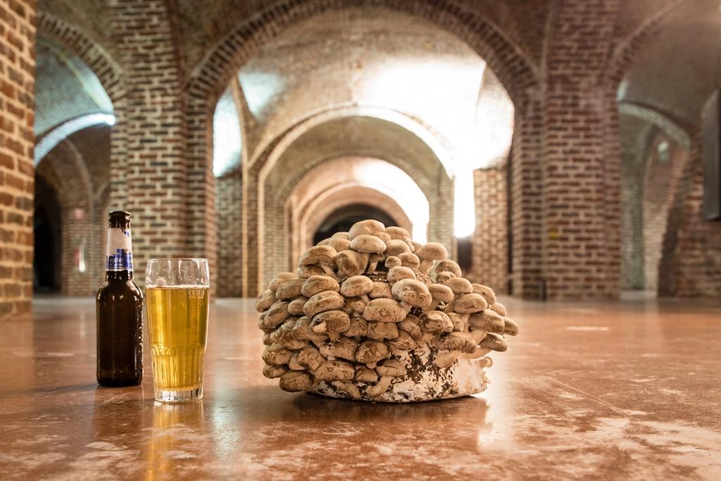 Le Champignon de Bruxelles: Fermer la boucle de la bière bruxelloise