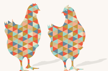 Life is Wonderpoule – Un projet all-inclusive de location pour l'élevage de poules