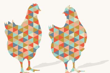 Life is Wonderpoule – Verhuur van kippenrennen